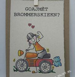 Brommerkiekn